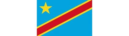 Jean Felix Mupande Kapwa, Director General, DRC Mining Cadastre (CAMI)